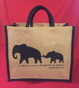 Karma Choeling's New Eco-friendly Shopping Bags – Karma
